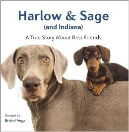 harlow and sage book.jpg-large
